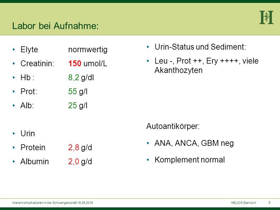 Sonographie: Nierenkomplikationen in der Schwangerschaft 19.06.2015