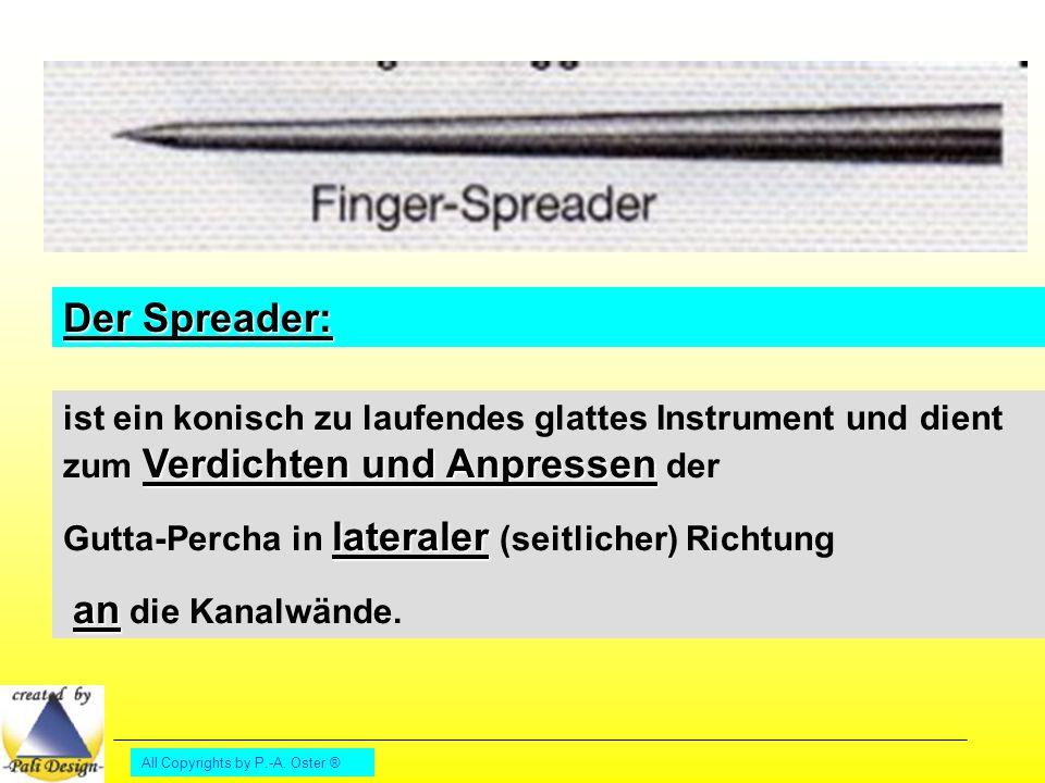 Der Spreader: ist ein konisch zu laufendes glattes Instrument und dient zum Verdichten und Anpressen der.