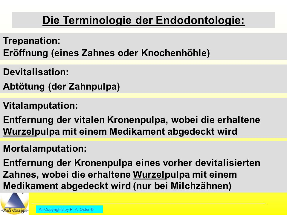 Die Terminologie der Endodontologie: