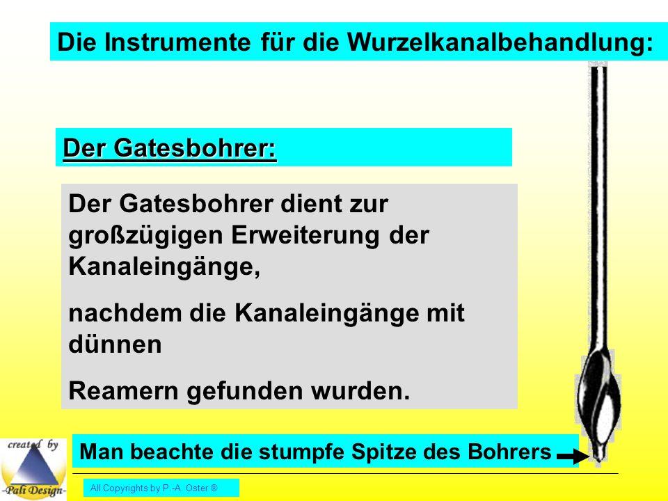 Die Instrumente für die Wurzelkanalbehandlung: