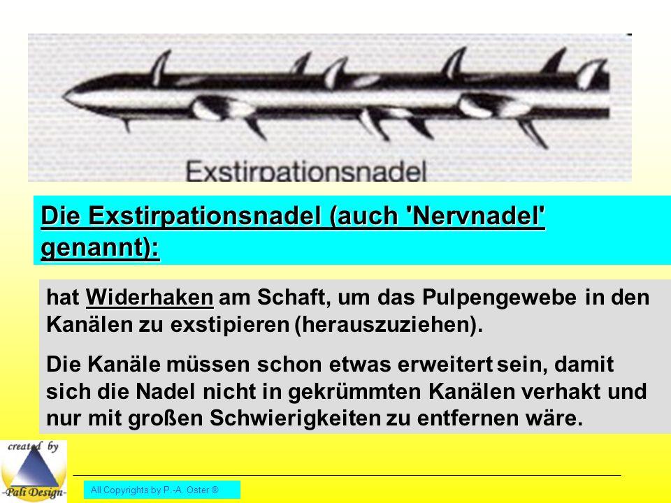 Die Exstirpationsnadel (auch Nervnadel genannt):