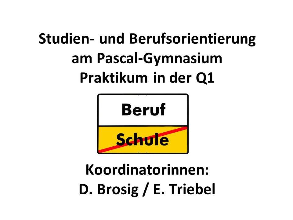 Studien- und Berufsorientierung am Pascal-Gymnasium