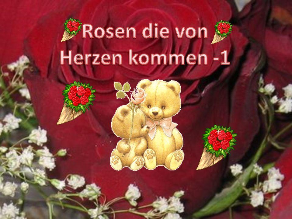 Rosen die von Herzen kommen -1