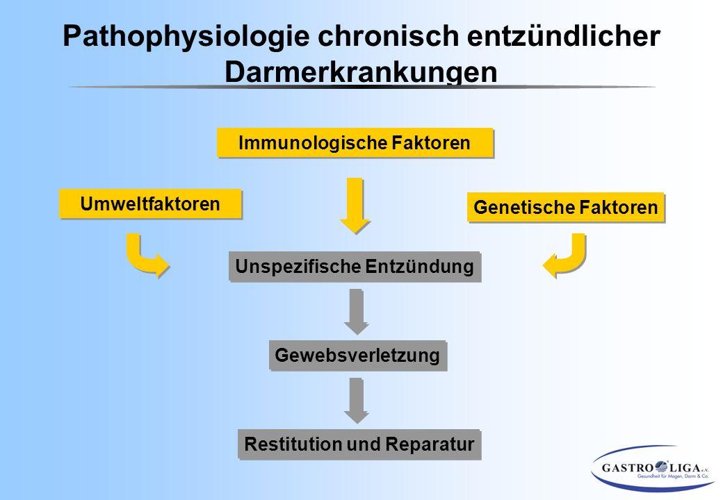 Pathophysiologie chronisch entzündlicher Darmerkrankungen