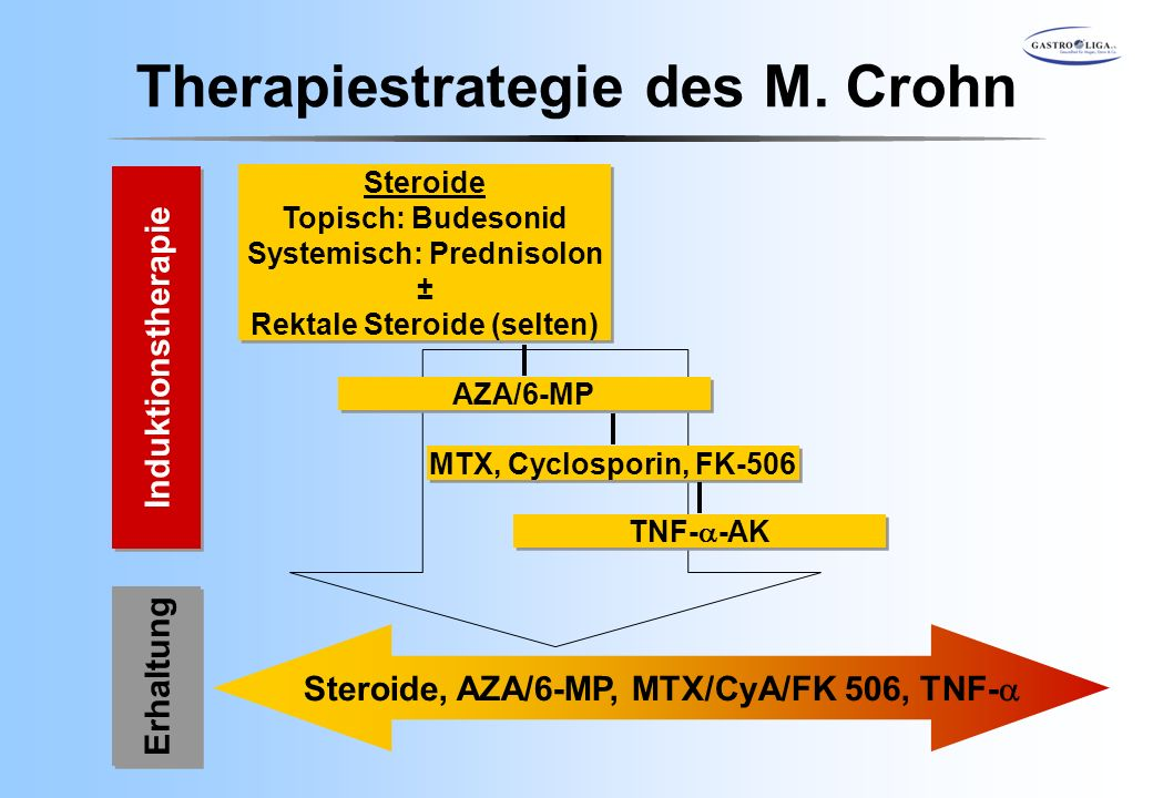 Therapiestrategie des M. Crohn