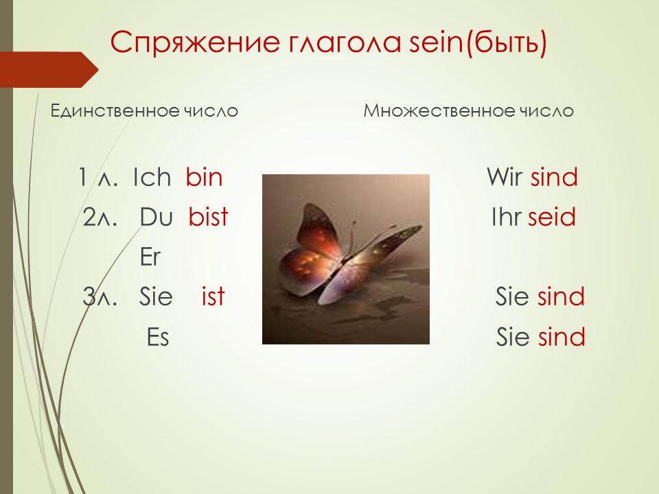 Спряжение глагола sein(быть)