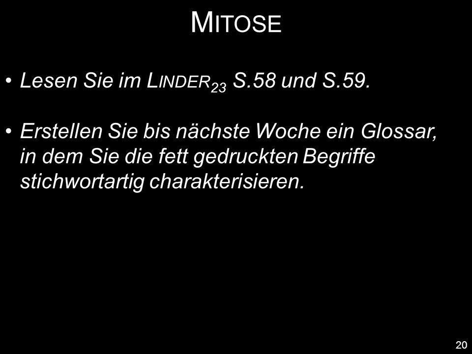 Mitose Lesen Sie im Linder23 S.58 und S.59.