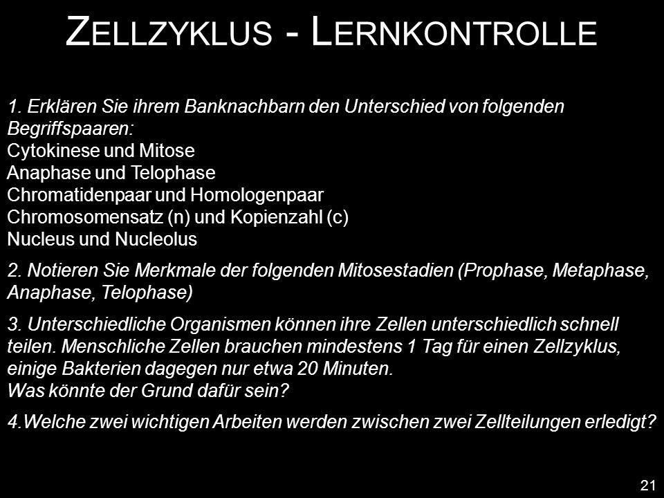 Zellzyklus - Lernkontrolle