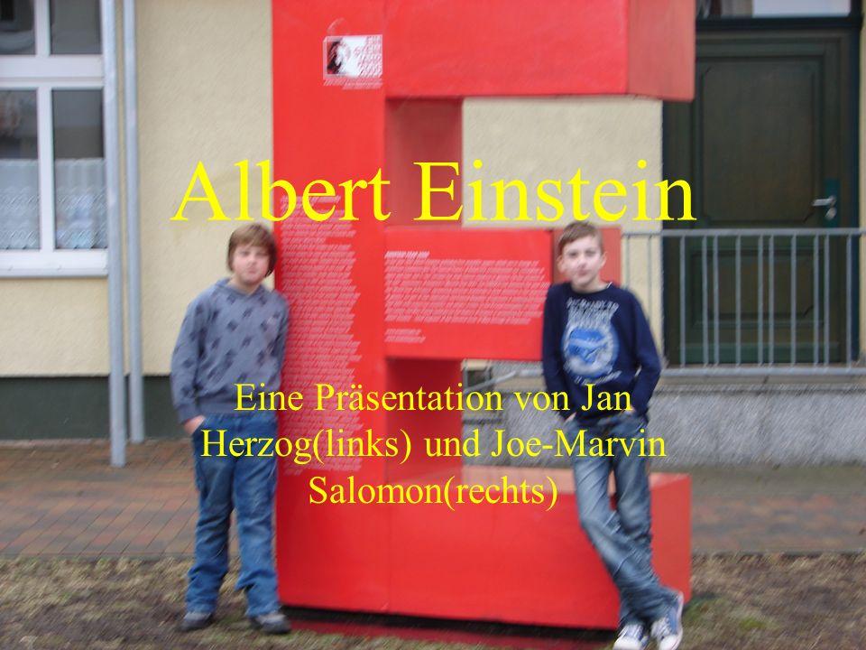 Eine Präsentation von Jan Herzog(links) und Joe-Marvin Salomon(rechts)