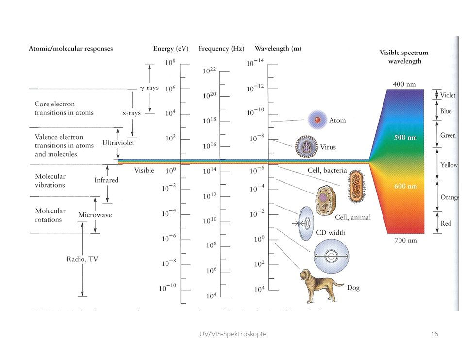 UV/VIS-Spektroskopie