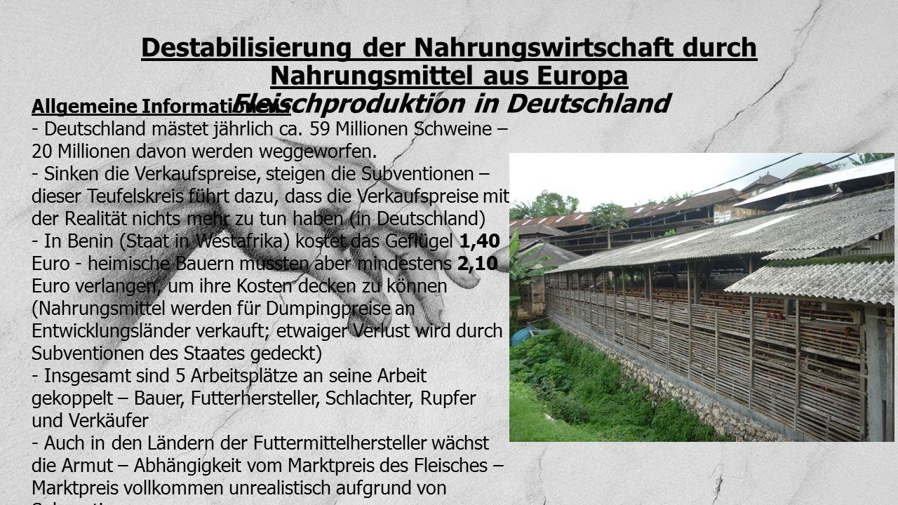 Destabilisierung der Nahrungswirtschaft durch Nahrungsmittel aus Europa Fleischproduktion in Deutschland