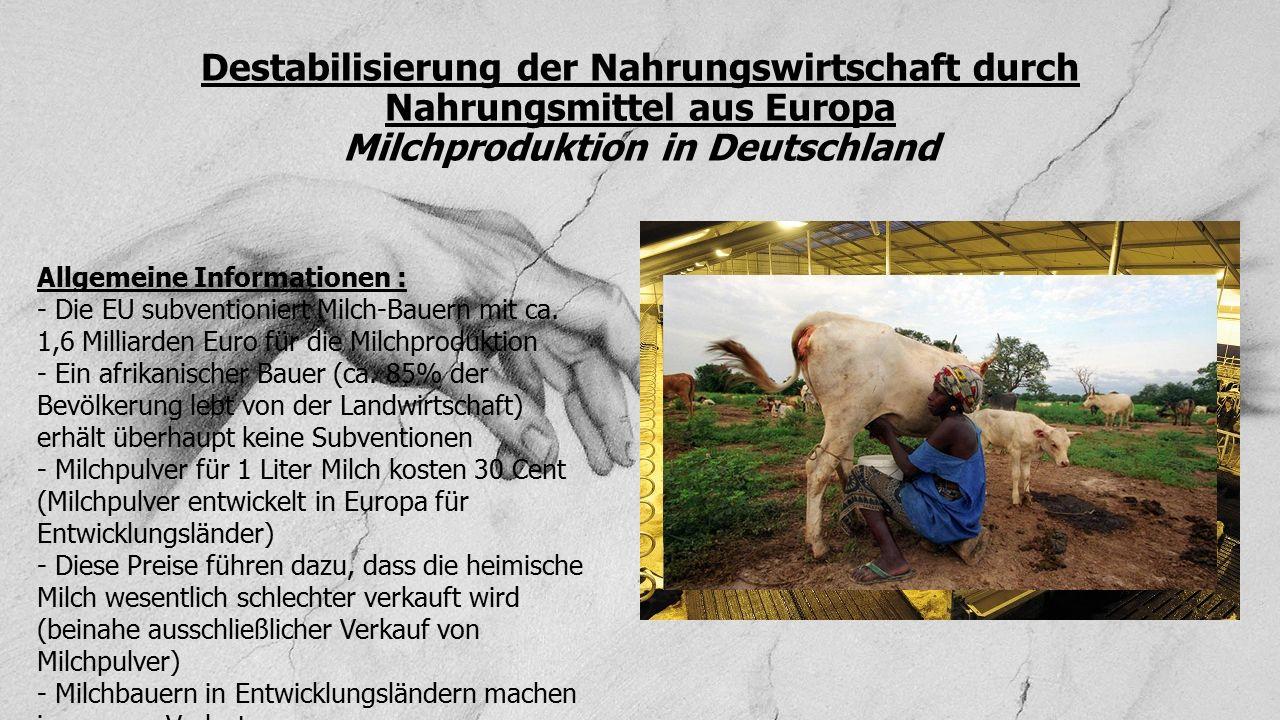 Destabilisierung der Nahrungswirtschaft durch Nahrungsmittel aus Europa Milchproduktion in Deutschland
