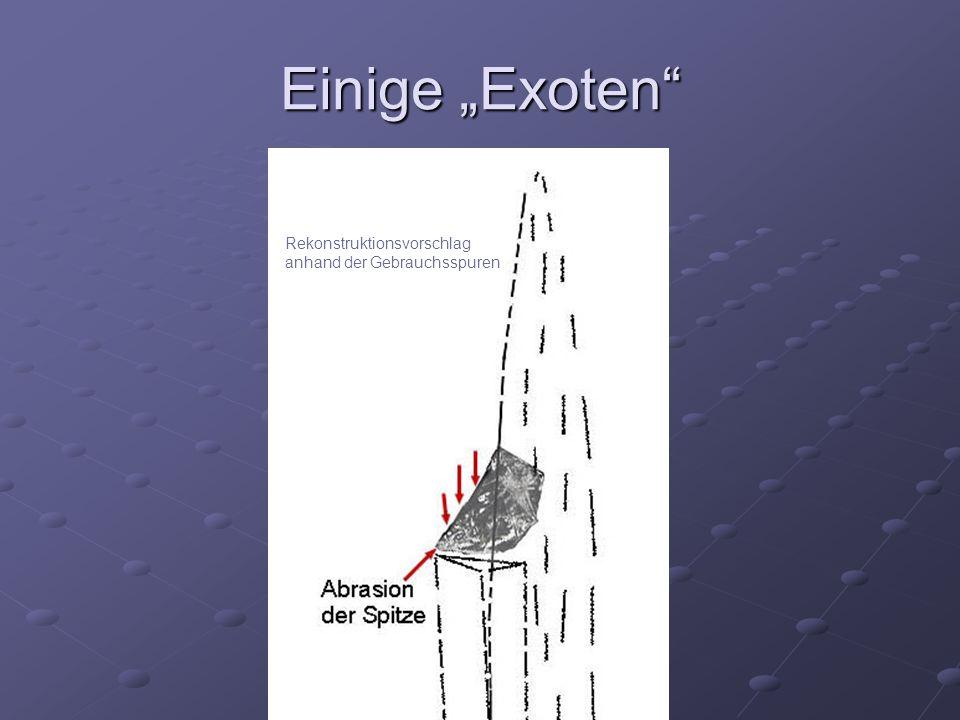 """Einige """"Exoten Rekonstruktionsvorschlag anhand der Gebrauchsspuren"""