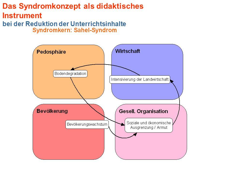 Das Syndromkonzept als didaktisches Instrument