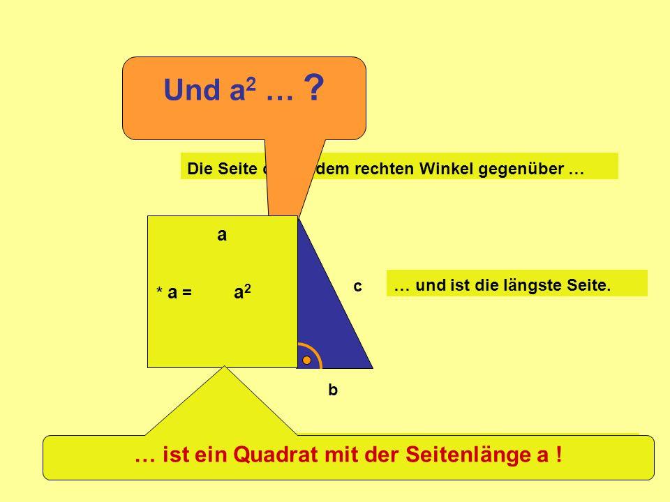 … ist ein Quadrat mit der Seitenlänge a !