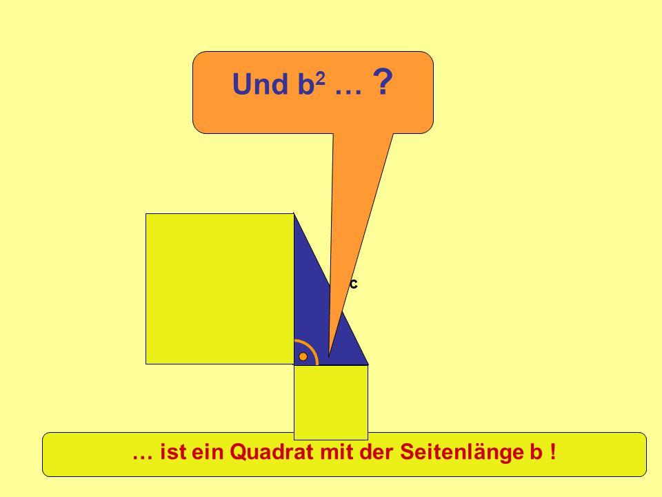 … ist ein Quadrat mit der Seitenlänge b !