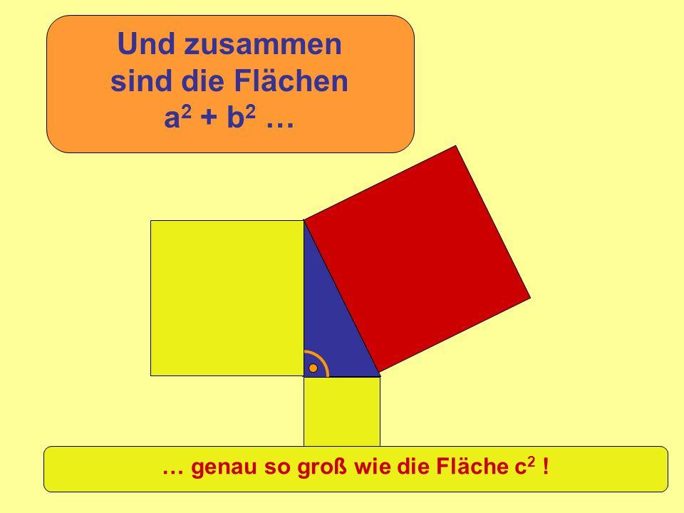 Und zusammen sind die Flächen a2 + b2 …