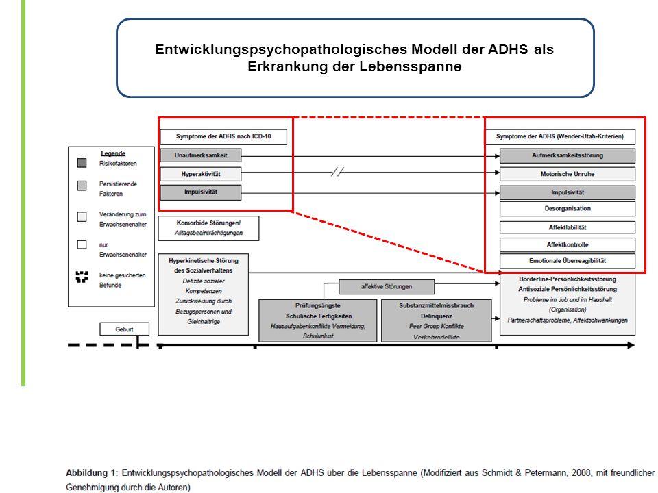 Entwicklungspsychopathologisches Modell der ADHS als Erkrankung der Lebensspanne