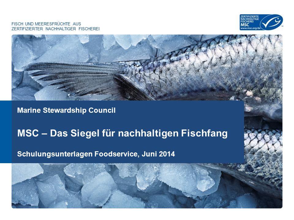MSC – Das Siegel für nachhaltigen Fischfang