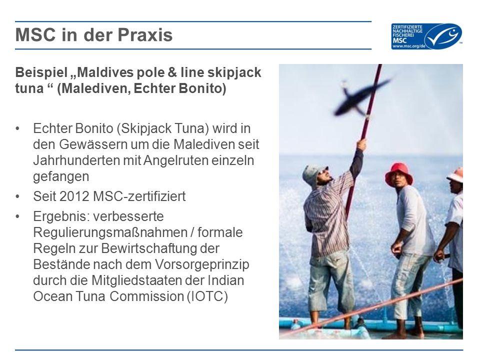 """MSC in der Praxis Beispiel """"Maldives pole & line skipjack tuna (Malediven, Echter Bonito)"""