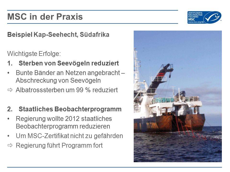MSC in der Praxis Beispiel Kap-Seehecht, Südafrika Wichtigste Erfolge: