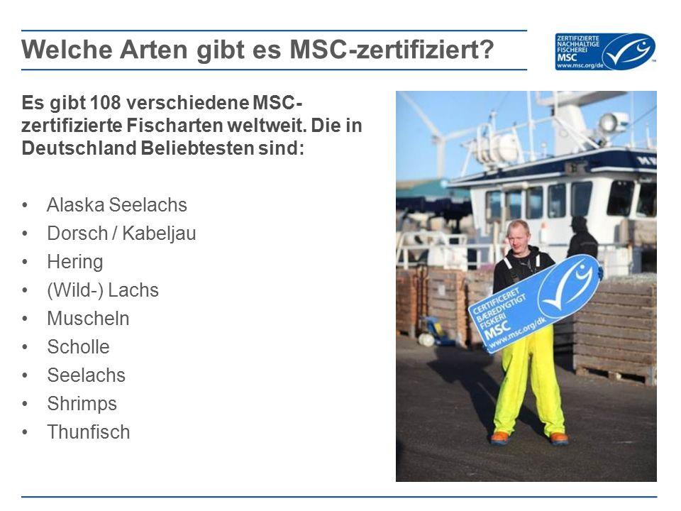 Welche Arten gibt es MSC-zertifiziert