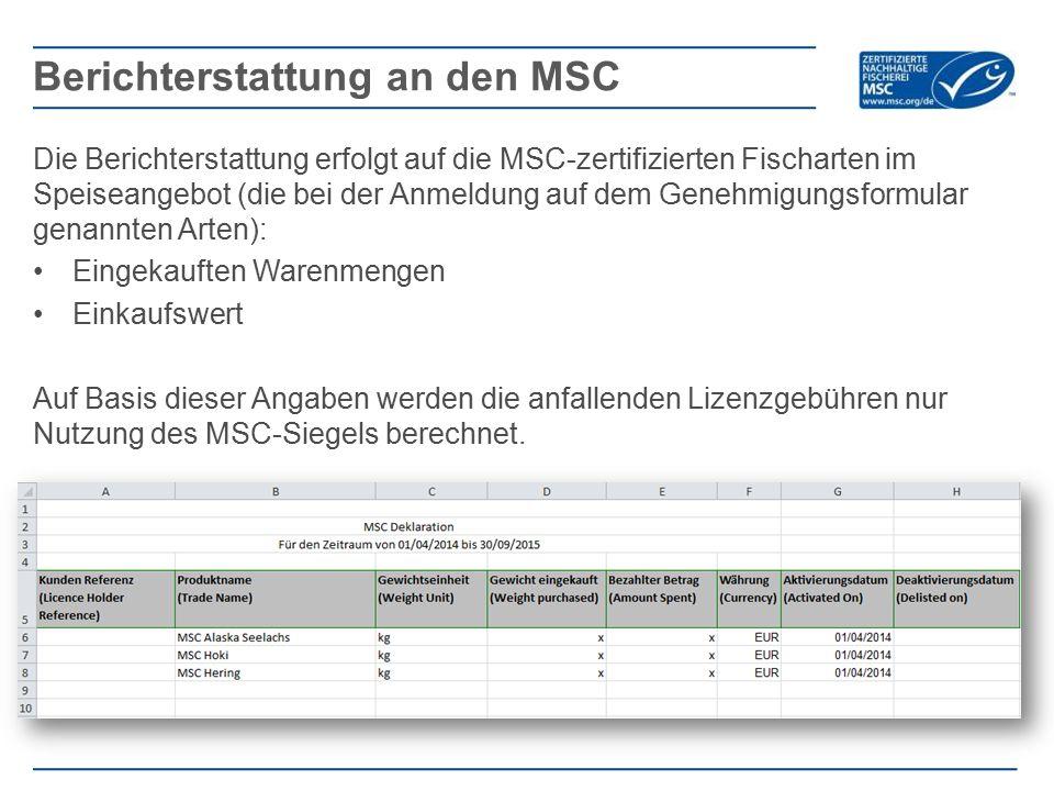 Berichterstattung an den MSC