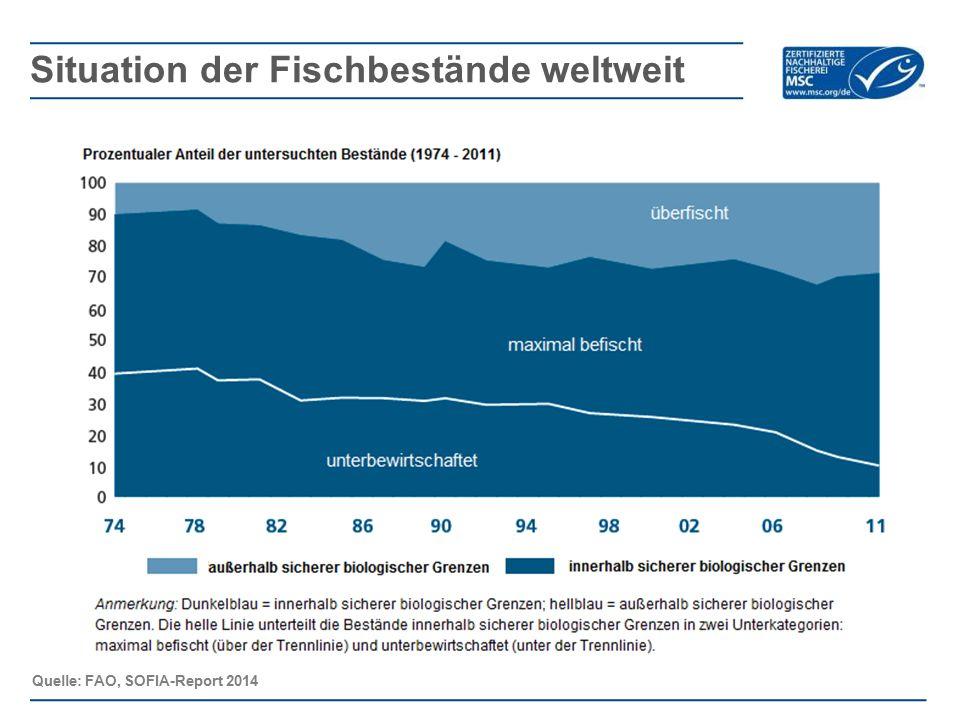 Situation der Fischbestände weltweit
