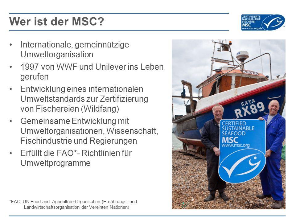 Wer ist der MSC Internationale, gemeinnützige Umweltorganisation