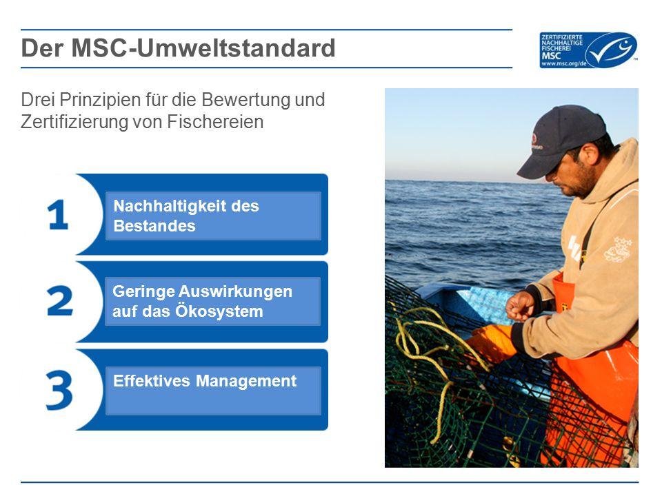 Der MSC-Umweltstandard