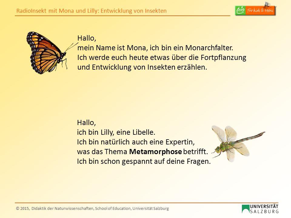 Hallo, mein Name ist Mona, ich bin ein Monarchfalter. Ich werde euch heute etwas über die Fortpflanzung und Entwicklung von Insekten erzählen.