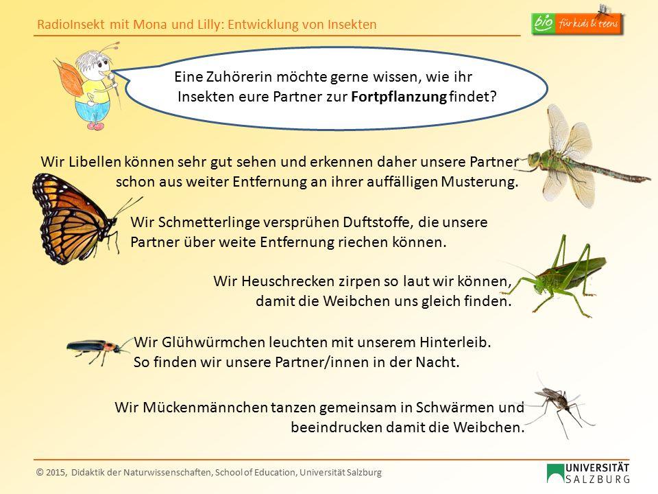 Eine Zuhörerin möchte gerne wissen, wie ihr Insekten eure Partner zur Fortpflanzung findet
