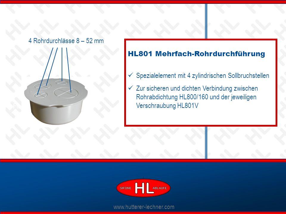 HL801 Mehrfach-Rohrdurchführung