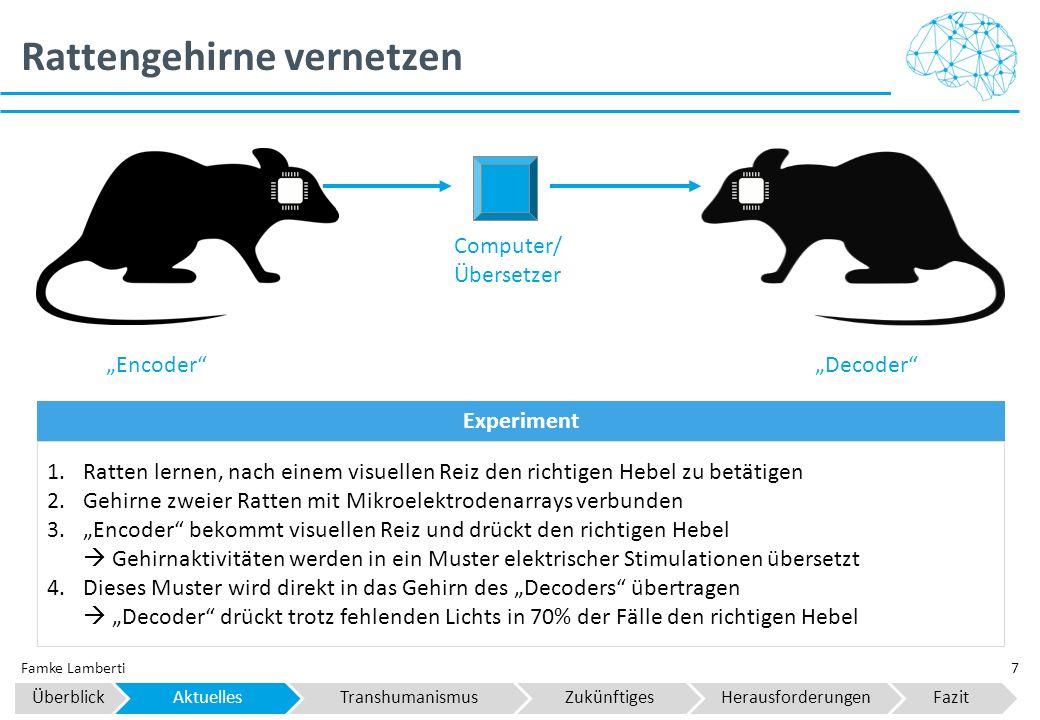 Rattengehirne vernetzen