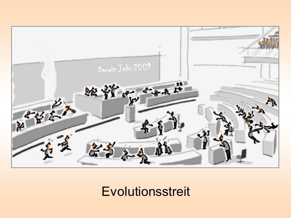 Darwin Jahr 2009 Evolutionsstreit