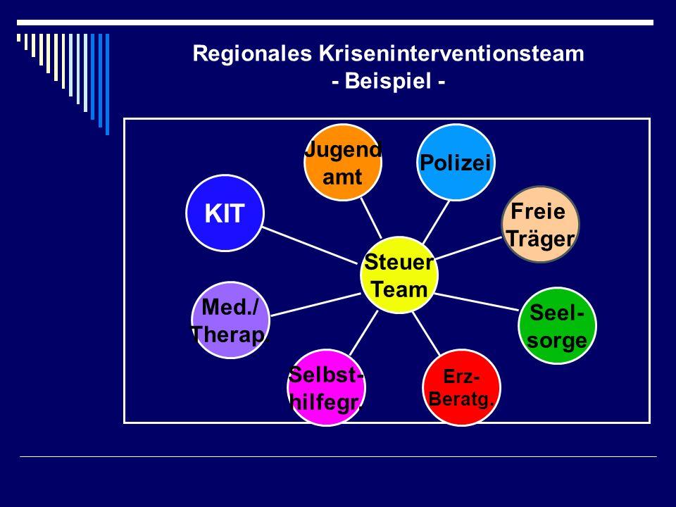 Regionales Kriseninterventionsteam - Beispiel -