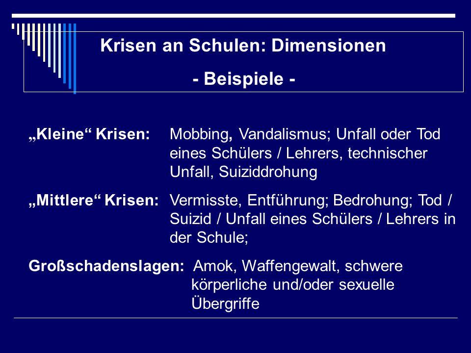 Krisen an Schulen: Dimensionen