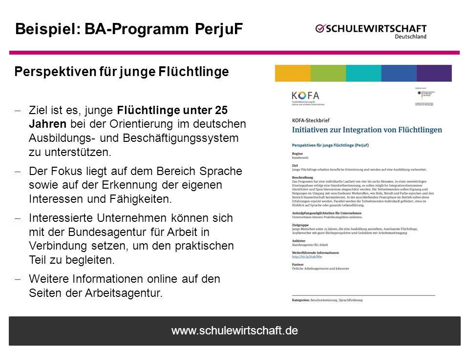 Beispiel: BA-Programm PerjuF
