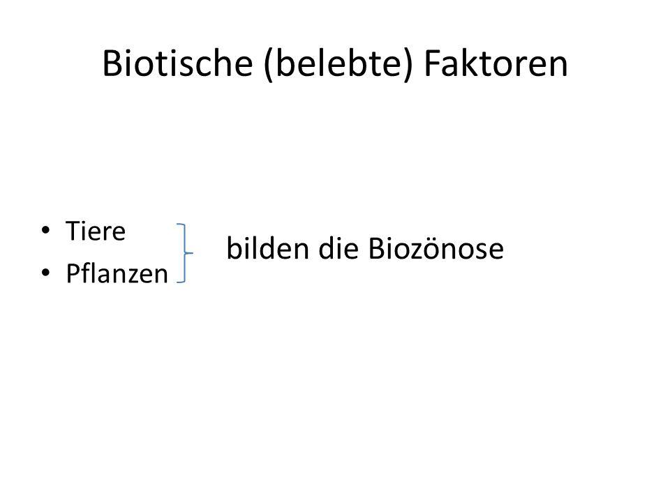Biotische (belebte) Faktoren