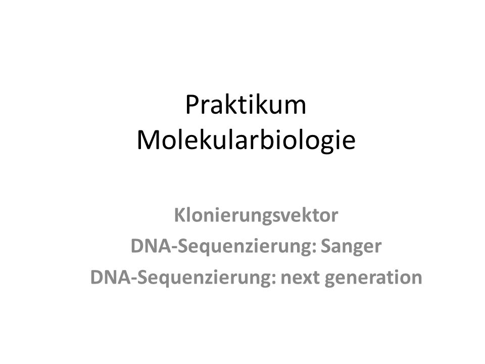 Praktikum Molekularbiologie