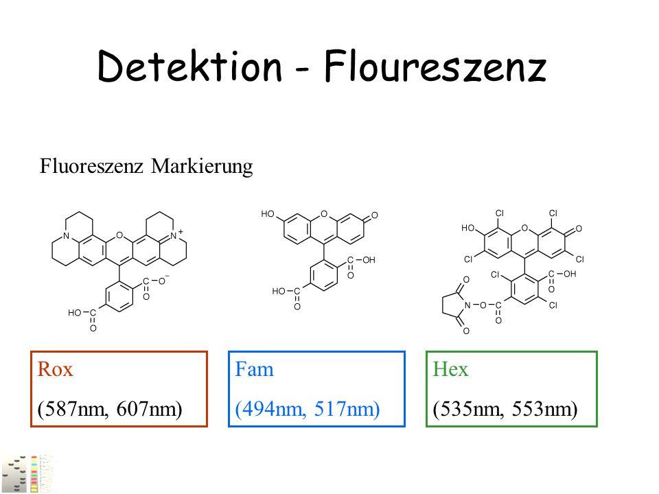 Detektion - Floureszenz