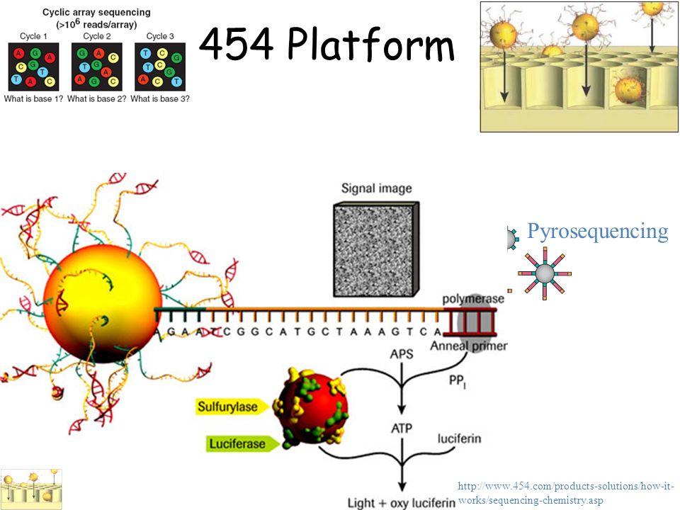 454 Platform Pyrosequencing