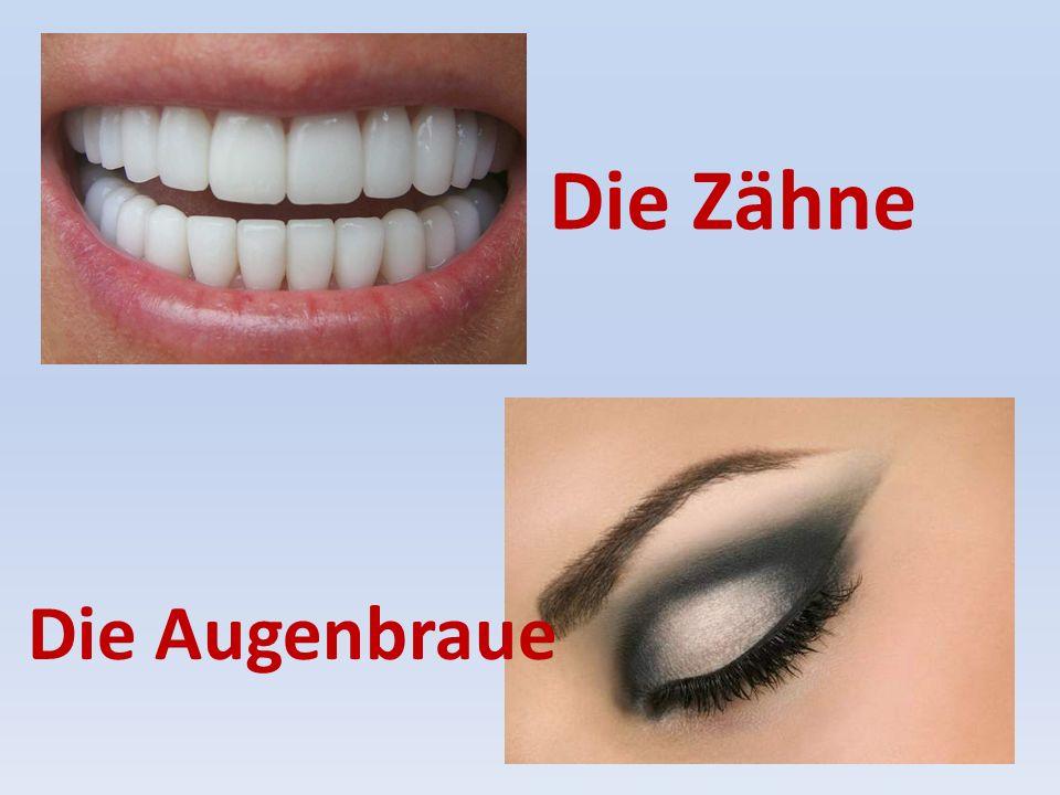 Die Zähne Die Augenbraue