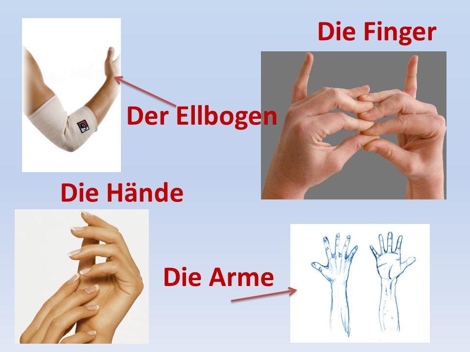 Die Finger Der Ellbogen Die Hände Die Arme
