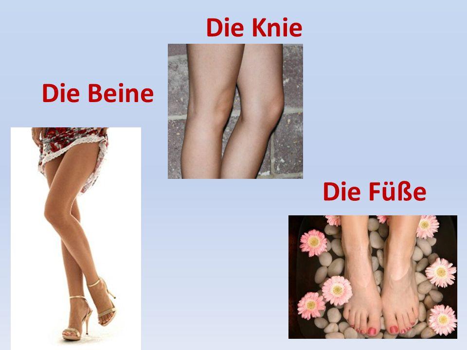 Die Knie Die Beine Die Füße