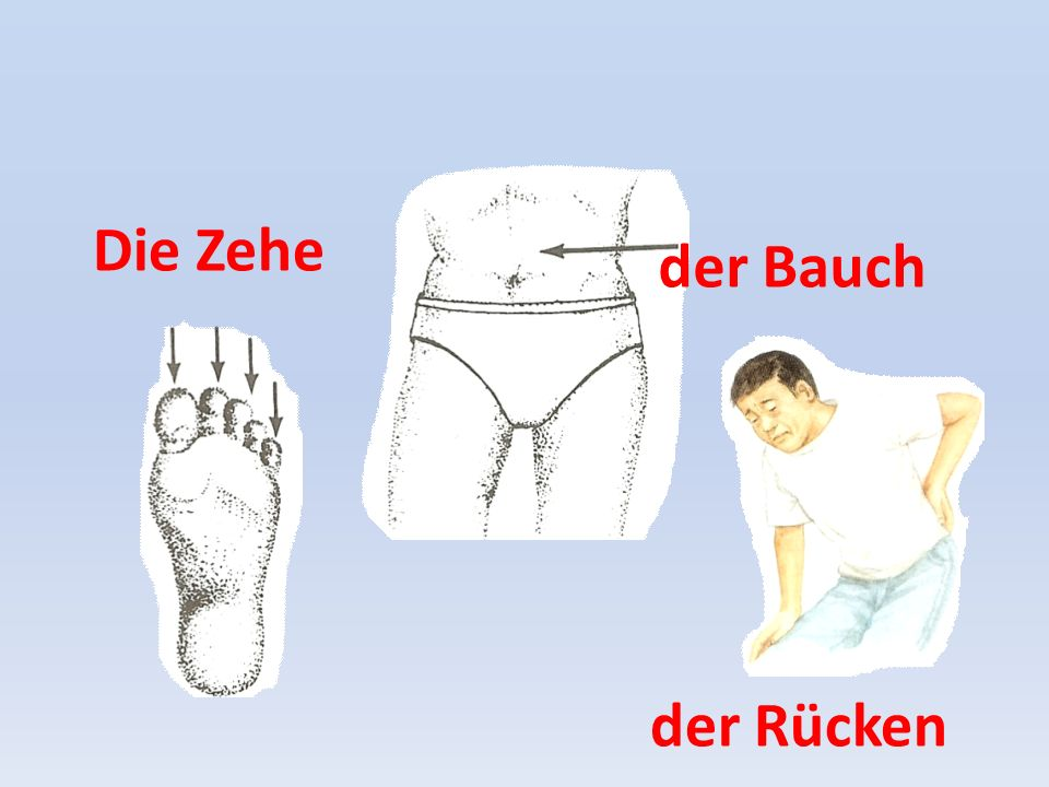 Die Zehe der Bauch der Rücken