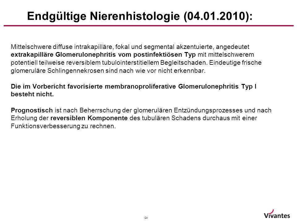 Endgültige Nierenhistologie (04.01.2010):