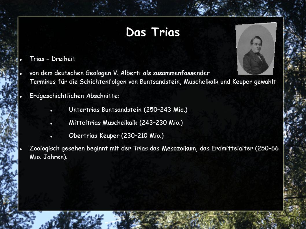 Das Trias Trias = Dreiheit