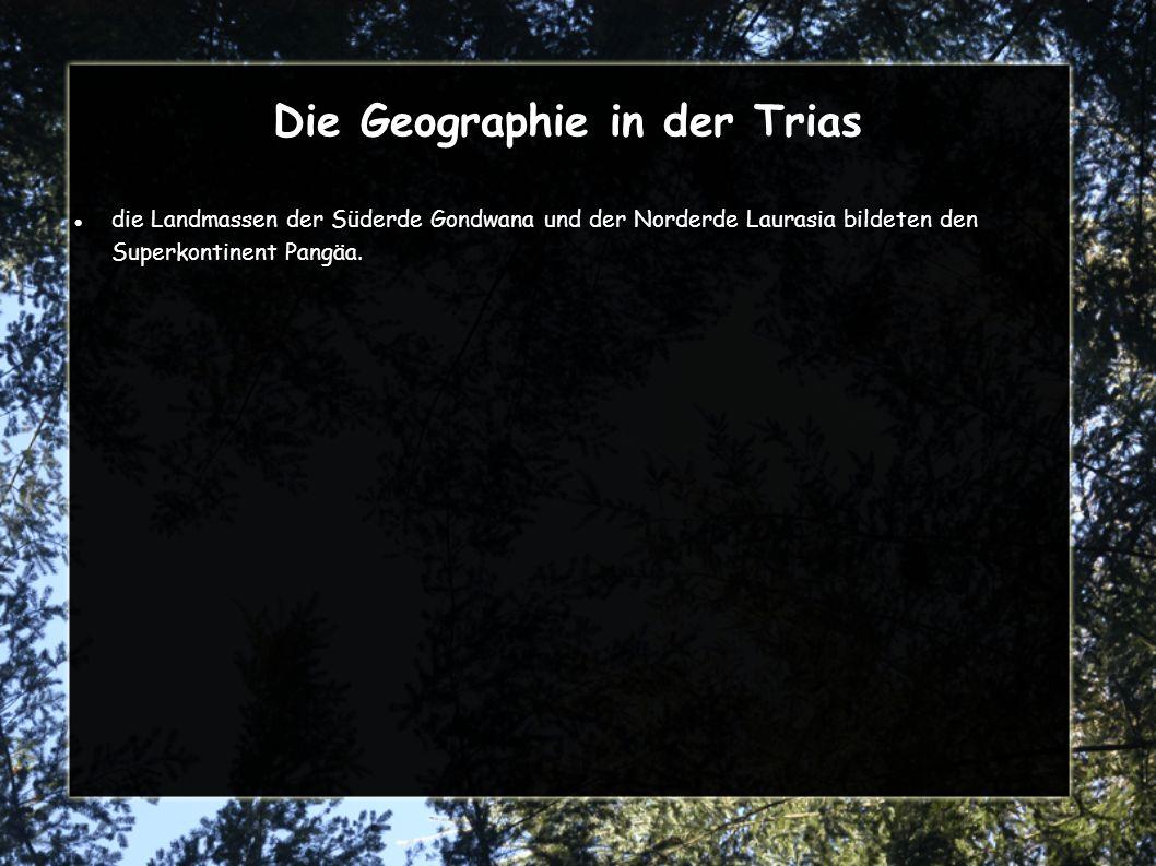 Die Geographie in der Trias
