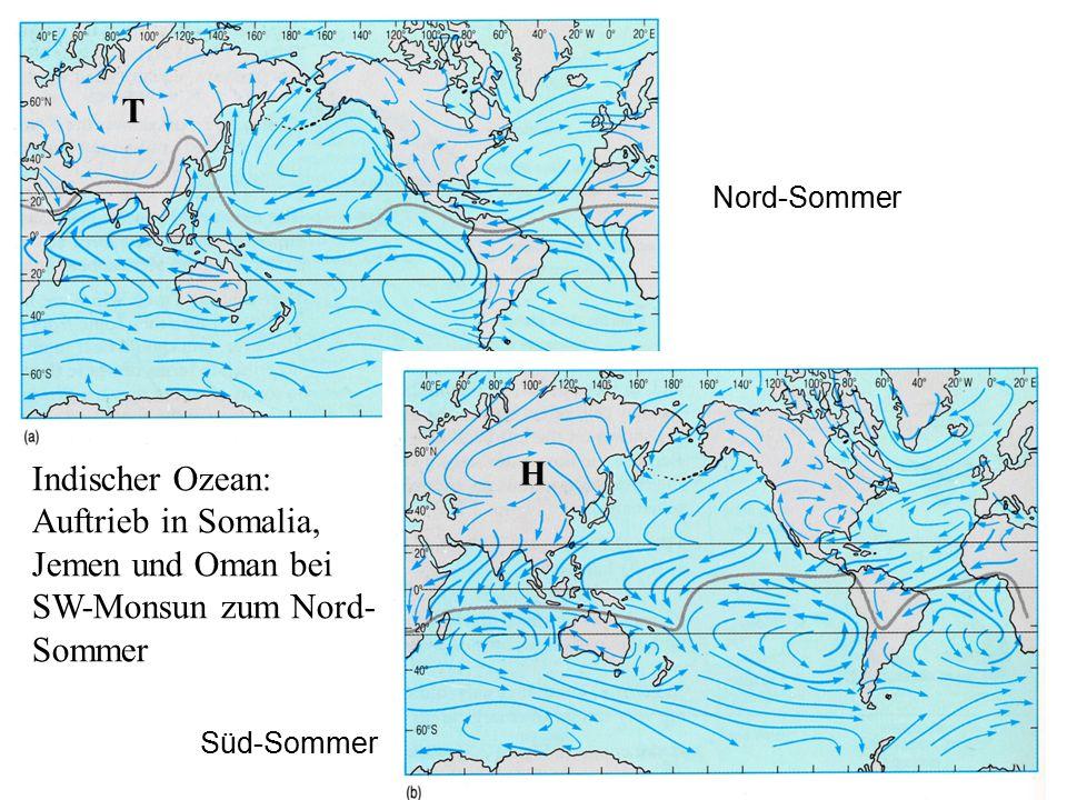 T H Indischer Ozean: Auftrieb in Somalia, Jemen und Oman bei